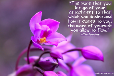 flowers up close the founders quote desires and energy flow daniel scranton channels danielscranton.com