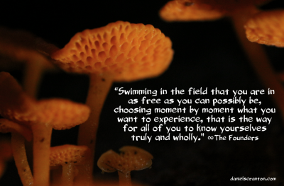 mushrooms up close the founders definitions quote channeled by daniel scranton danielscranton.com