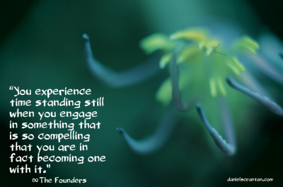 flower up close the founders quote channeled by daniel scranton infinite now moment danielscranton.com