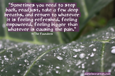leaf with raindrops up close the founders quote channeled by daniel scranton danielscranton.com
