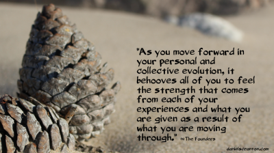 pine cone on the beach the founders quote channeled by daniel scranton