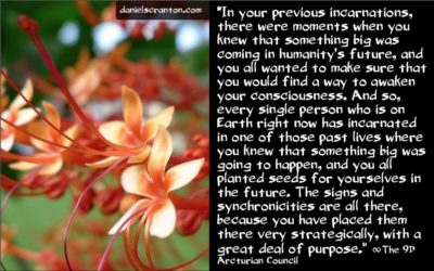 planting seeds in past lives - the 9th dimensional arcturian council - channeled by daniel scranton channeler of archangel michael
