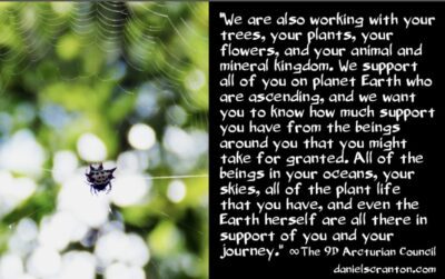 there is arcturian support all around you - the 9th dimensional arcturian council - channeled by daniel scranton, channeler of archangel michael