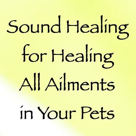 sound healing for healing all ailments in your pets