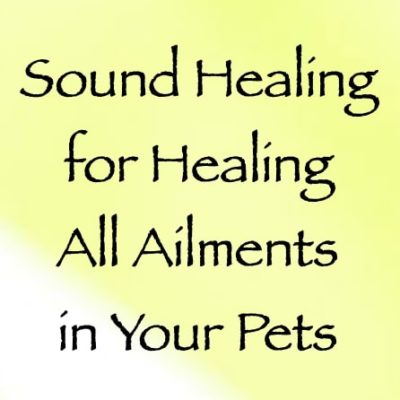 sound healing for healing all ailments in your pets channeled by daniel scranton